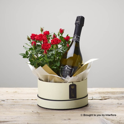 Ruby Rose Hatbox and Prosecco